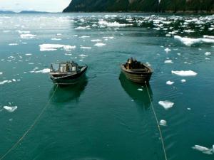 skiffs