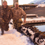 diver_duck_hunting_2